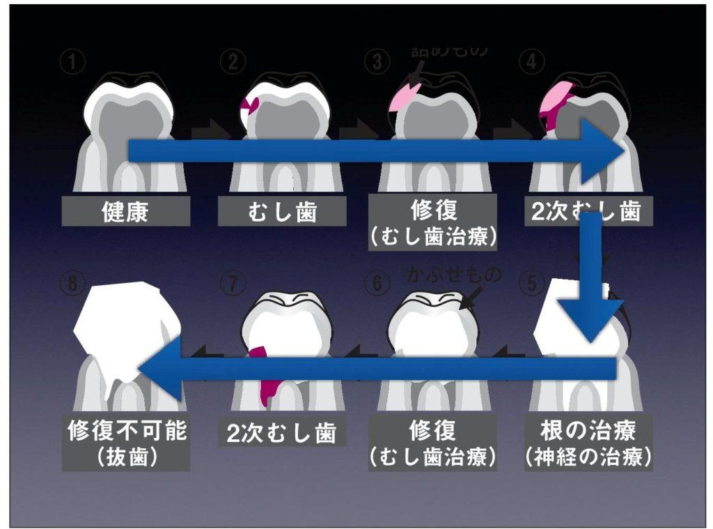 セミナー/インプラント/講演会/歯科