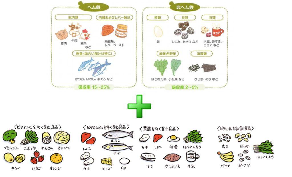 貧血/食事療法/栄養バランス/主食・主菜・副菜